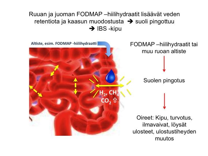 Ärtyneen suolen oireyhtymä selkäkipu